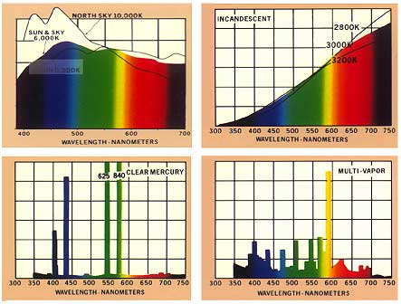 Spectra of various light sources